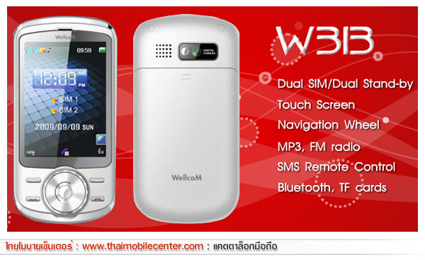 WellcoM W313